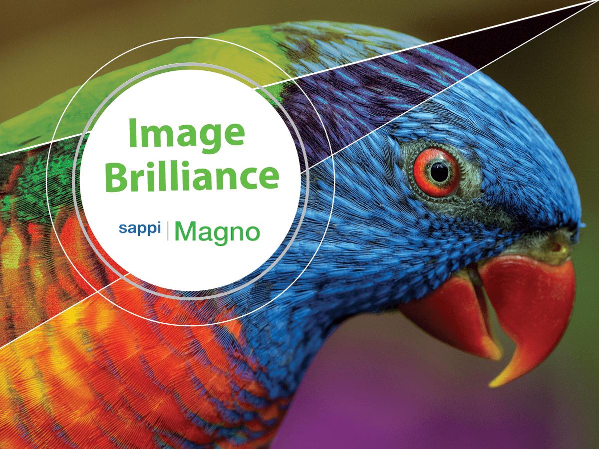 Sappi Magno Plus image brilliance